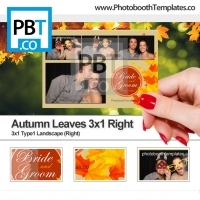 Autumn Leaves 3x1 Right